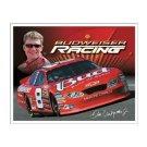 Dale Earnhardt Jr. - #8 Budweiser Racing - 2005 Tin Sign