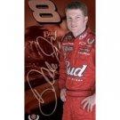 Dale Earnhardt Jr. - #8 Helmet on Car - 2005 Tin Sign