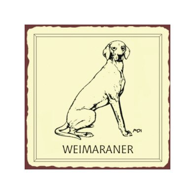 Weimaraner Dog Metal Art Sign