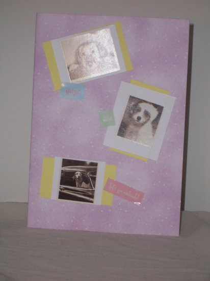 Dog Lovers Notecard