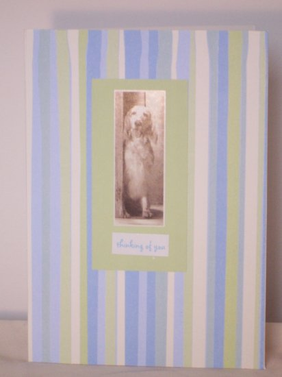 Thinking of You dog card - FREE shipping!