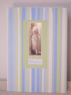 Thinking of You dog card - FREE shipping!