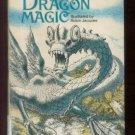 Dragon Magic ANDRE NORTON hcdj 1972 1st pr