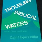 Troubling Biblical Waters paperback Cain Hope Felder Christian reading biblical bible faith book