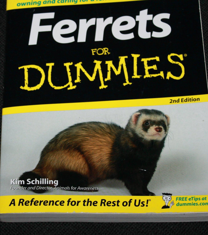 Ferrets for Dummies - pet instruction book