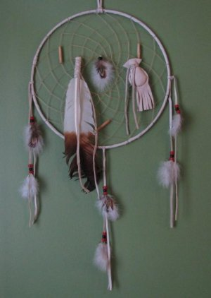 Native American Indian Medicine Wheel Dream Catcher