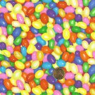 """I Spy 6 by 9 inch Gourmet Jelly Beans Jelly Easter Candy Novelty Fabric 6"""" x 9"""""""