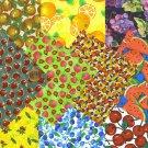 I SPY NOVELTY Fruits and Vegetables  set 11 Fabric Quilt 4 inch Squares KL1