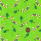 "I Spy 6 by 9 inch Candy Canes Green Peppermint  Novelty Fabric 6"" x 9"" piece"