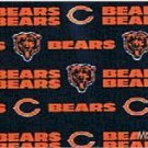 MadieBs NFL Chicago Bears  Custom Pillowcase  w/Name