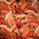 MadieBs Indian Corn Harvest  Custom Smock Cobbler Apron