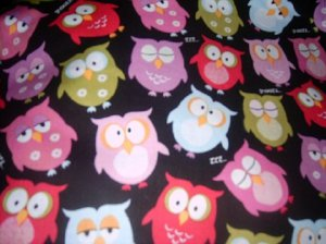 Oh My Cute Colorful Owls  Nap Mat Pad Cover and pillowcase w/Name