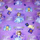 MadieBs Princess in Training  Cotton Personalized Custom  Pillowcase  w/Name