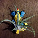 Tilla Critters Karma Chameleon One of a Kind Air Plant Creations from Chili Fi..