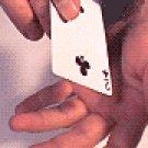 The FreeFloat Card (EBOOK)