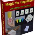 Foundations of Magic