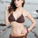 Fabulous Coffee Ruffles Two-Piece 82% Nylon 18% Spandex Womens Bikini Swimsuit