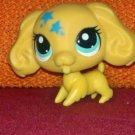 Cocker Spaniel #3516- Littlest Pet Shop Paint Splashin' Pets