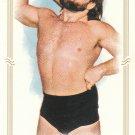 2012 Topps WWE Heritage Allen & Ginter Mini Insert- Hacksaw Jim Duggan #22