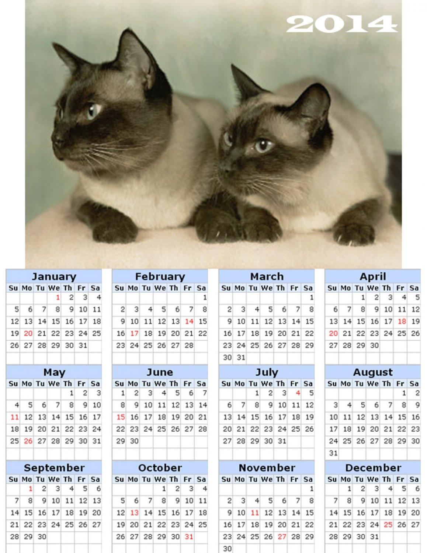 2014 calendar toolbox magnet refrigerator magnet Cats #5