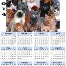 2014 calendar toolbox magnet refrigerator magnet Cats #7