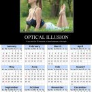 2014 calendar toolbox magnet refrigerator magnet Optical Illusions #1