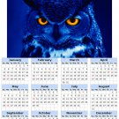 2014 calendar toolbox magnet refrigerator magnet Birds #1