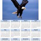 2014 calendar toolbox magnet refrigerator magnet Birds #3