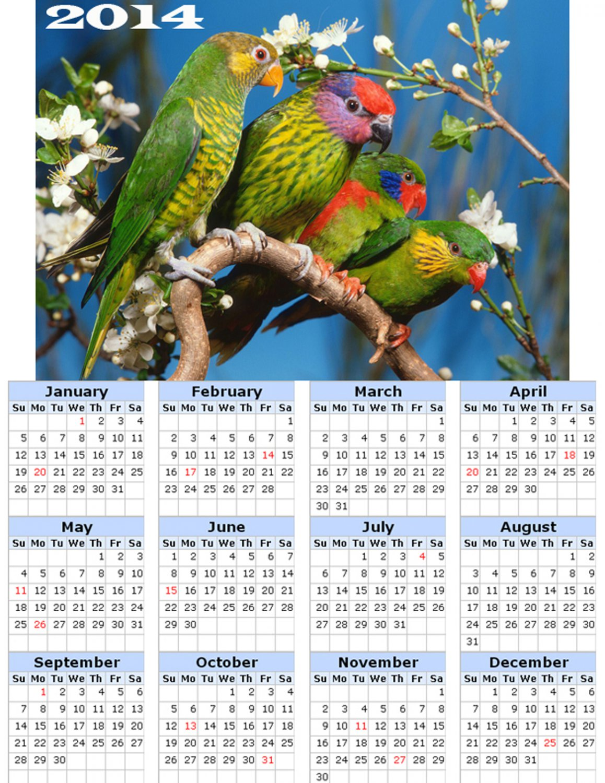 2014 calendar toolbox magnet refrigerator magnet Birds #6