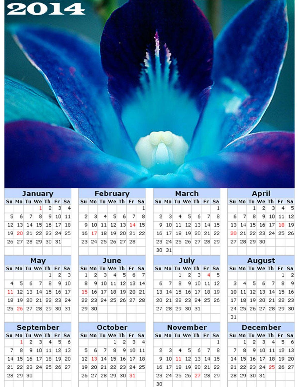 2014 calendar toolbox magnet refrigerator magnet Flowers #2