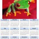 2014 calendar toolbox magnet refrigerator magnet Frogs #1