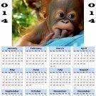 2014 calendar toolbox magnet refrigerator magnet Primates #4