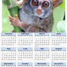 2014 calendar toolbox magnet refrigerator magnet Primates #7