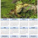 2014 calendar toolbox magnet refrigerator magnet Frogs #6