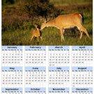2014 calendar toolbox magnet refrigerator magnet Deer #5