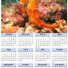 2014 calendar toolbox magnet refrigerator magnet Ocean Life #1