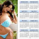 New calendar 2014 toolbox refrigerator magnet Tap & Drill Charts Bethany