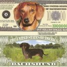 DACHSHUND DOG PUPPY MILLION DOLLAR BILLS x 4 GIFT NEW
