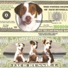 JACK RUSSELL TERRIER DOG PUPPY MILLION DOLLAR BILLS x 4