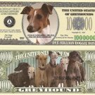 GREYHOUND DOG ONE MILLION DOLLAR BILLS x 4 NEW GIFT