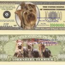 YORKSHIRE TERRIER DOG PUPPY MILLION DOLLAR BILLS x4 NEW