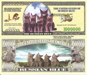 RUSSIAN BLUE CAT KITTENS MILLION DOLLAR BILLS x 4 NEW
