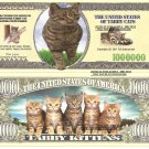 TABBY CAT KITTENS MILLION DOLLAR BILLS x 4 NEW