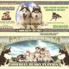SIBERIAN HUSKY DOG PUPPIES MILLION DOLLAR BILLS x 4