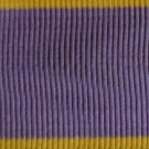 Ribbon Medal for Distinguished Work