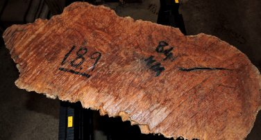 Curly Brown Mallee Wood Burl 22x9x5 Lathe Woodturning Calls Knife Grips Lumber