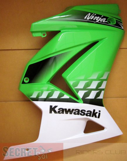 Kawasaki Ninja R Special Edition Right Fairing