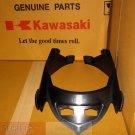 Kawasaki 55028-0229 Ninja 250R EX250 RADIATOR COWL OEM 08 09 10 11 12