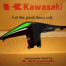 Kawasaki 36040-5351-H8 Ninja 250R EX250 OEM LH Left Tail Fairing SE Black Green Special Edition
