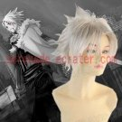 D.Gray-man Allen Walker cosplay wig